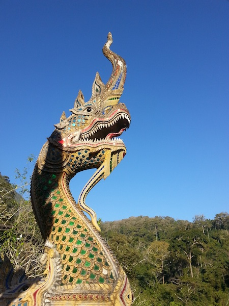 Chiang Dao Dragon